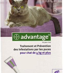 ADVANTAGE GATO 80 - MAIS 4KG-0