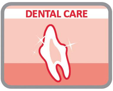 Promovem a mastigação para manter os dentes limpos e sãos