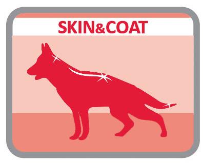 Especial para o cuidado da pele e do pêlo