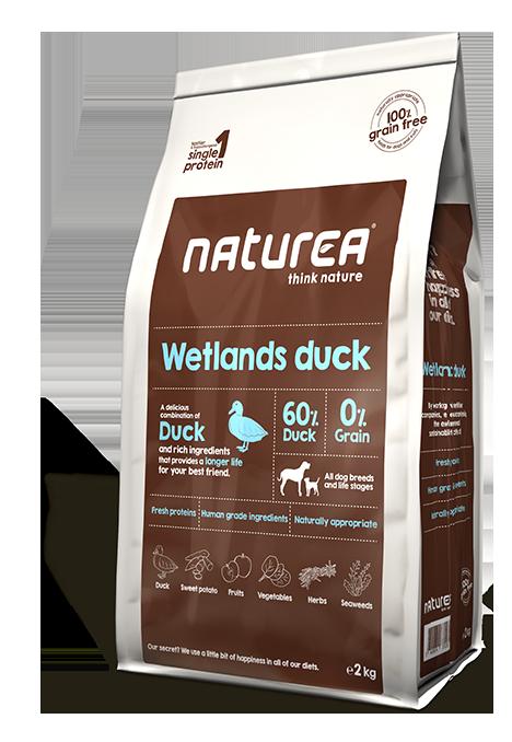 Naturea Wetlands duck-0
