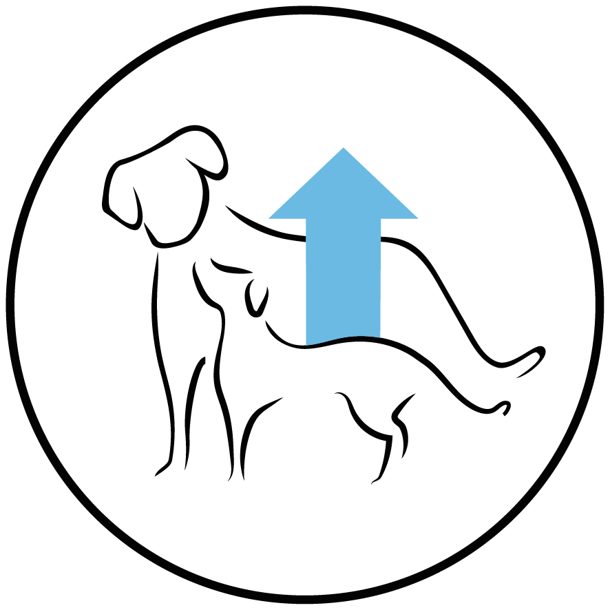 Rico em proteína e gorduras animais para proporcionar a energia e nutrientes suficientes para cachorros em crescimento.