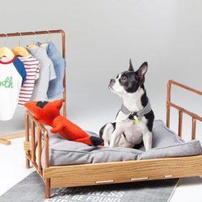 Cama P/ Cães e Artigos de Conforto