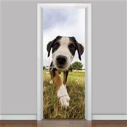 Portas para Cães